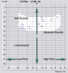Audiogram-Blank-Annotated The Hearing Consultancy